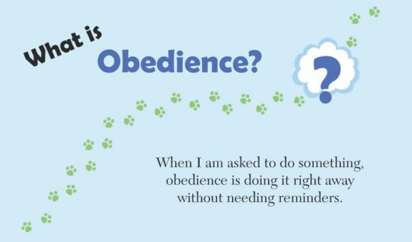What is obedience kids
