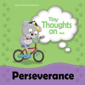 Tiny Thoughts on Perseverance